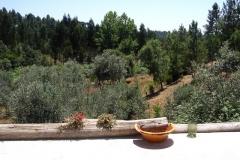 Balanchinho-Kl.uitzicht-terras-boerderij